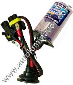 50 Watt HID Bulb